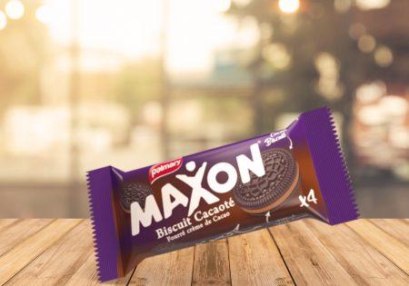 Petit-biscuit-Maxon-C